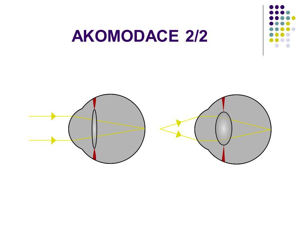 AKOMODACE 2/2