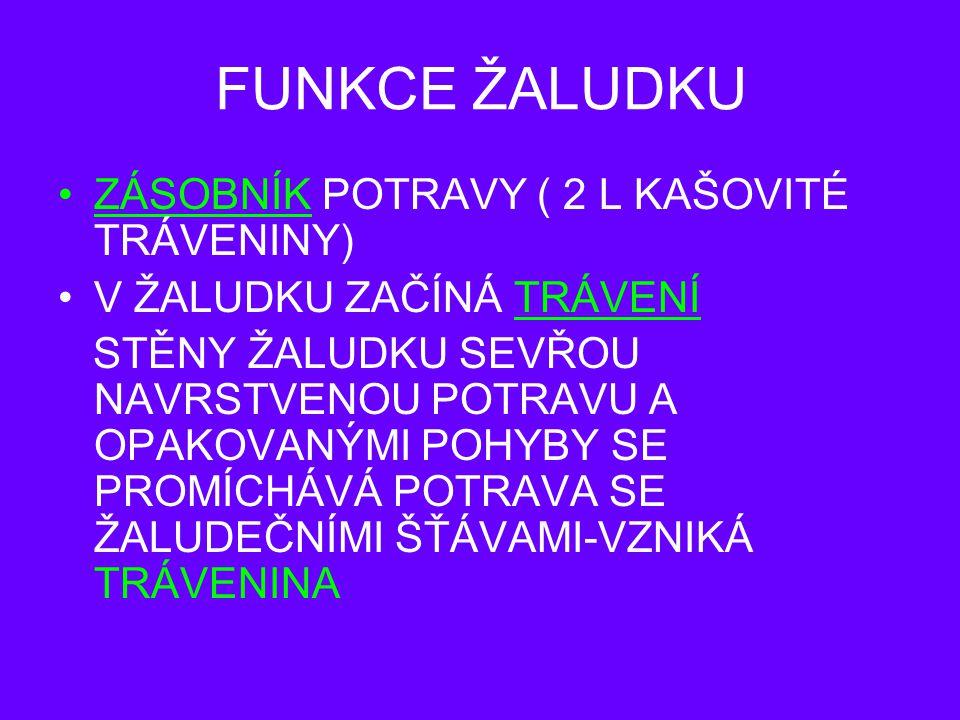 FUNKCE ŽALUDKU ZÁSOBNÍK POTRAVY ( 2 L KAŠOVITÉ TRÁVENINY)