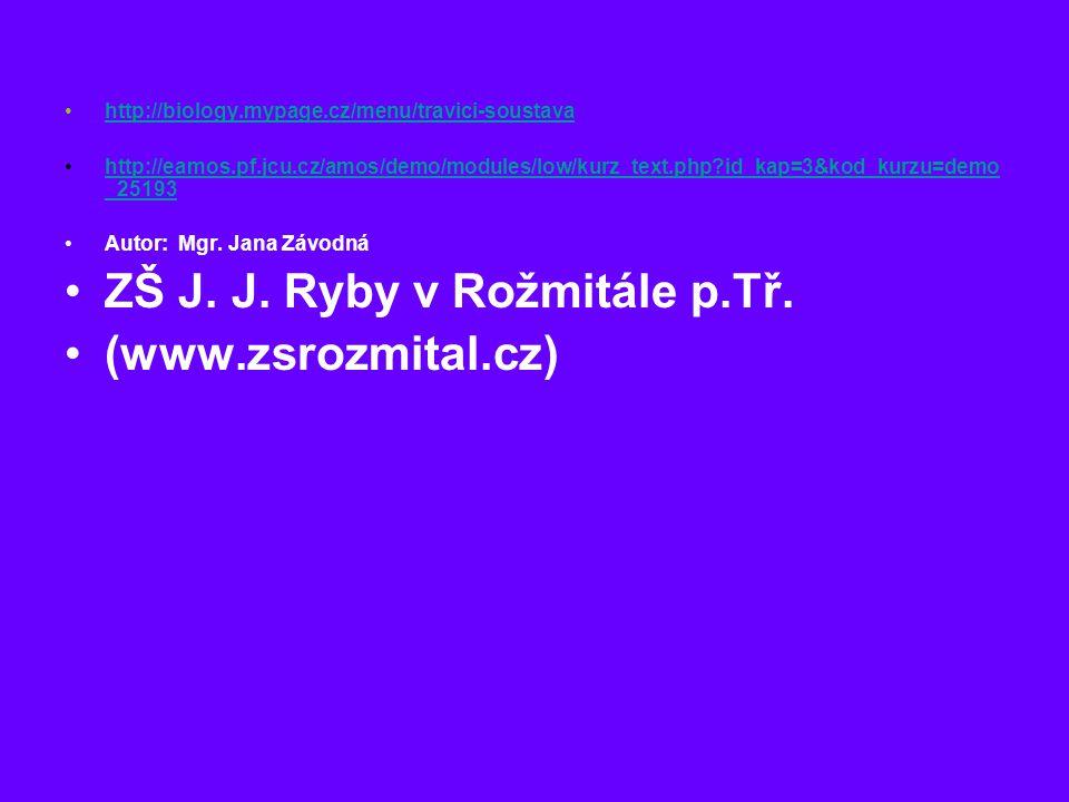 ZŠ J. J. Ryby v Rožmitále p.Tř. (www.zsrozmital.cz)