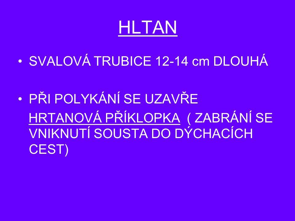 HLTAN SVALOVÁ TRUBICE 12-14 cm DLOUHÁ PŘI POLYKÁNÍ SE UZAVŘE