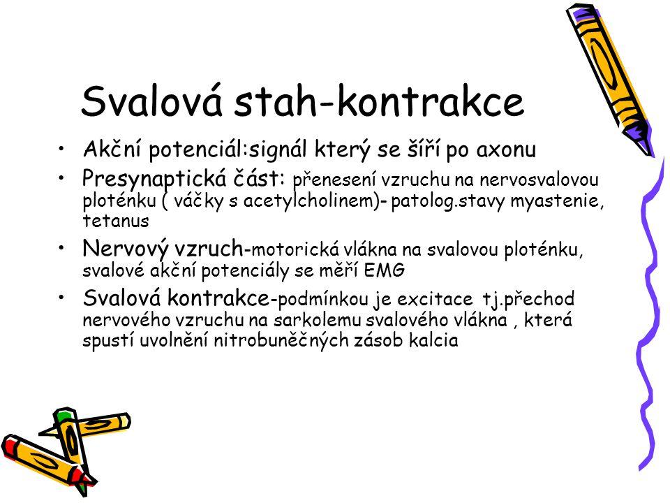 Svalová stah-kontrakce
