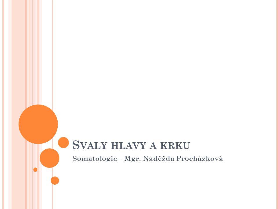 Somatologie – Mgr. Naděžda Procházková