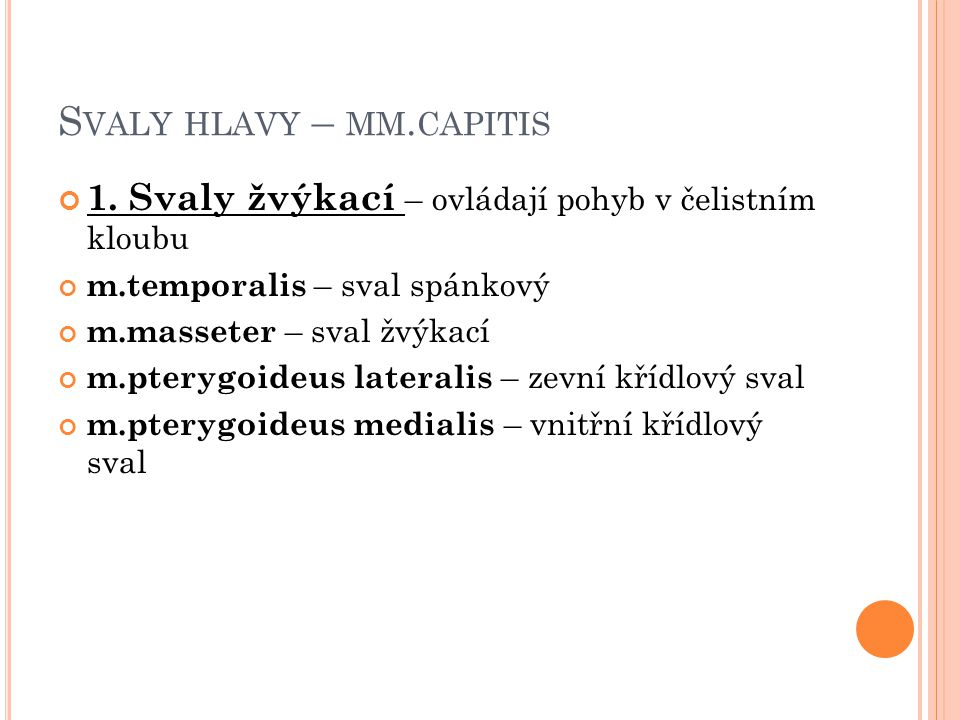 Svaly hlavy – mm.capitis