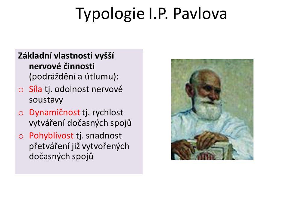 Typologie I.P. Pavlova Základní vlastnosti vyšší nervové činnosti (podráždění a útlumu): Síla tj. odolnost nervové soustavy.