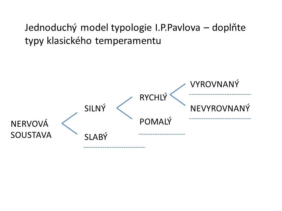 Jednoduchý model typologie I. P