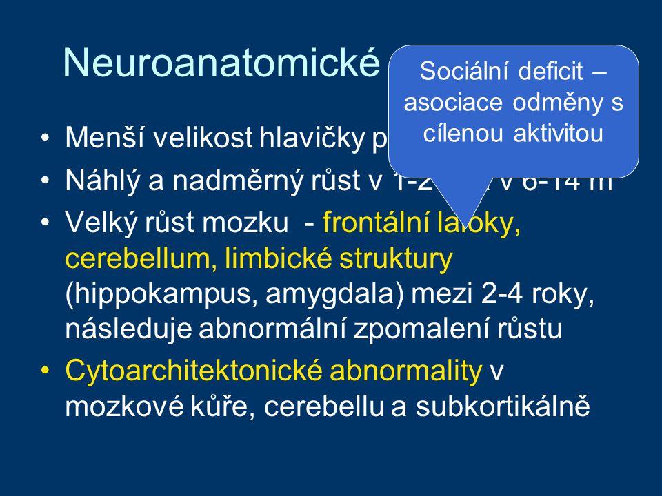 Neuroanatomické abnormality