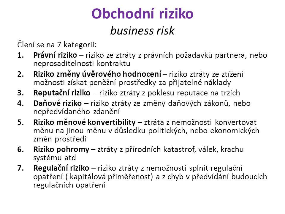 Obchodní riziko business risk