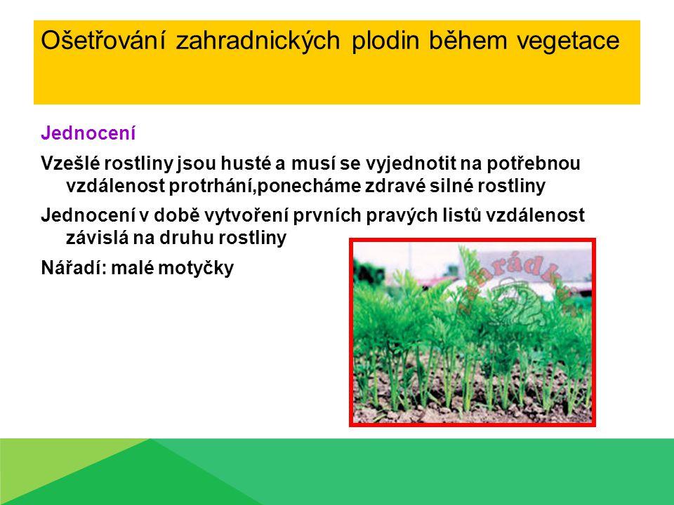 Ošetřování zahradnických plodin během vegetace