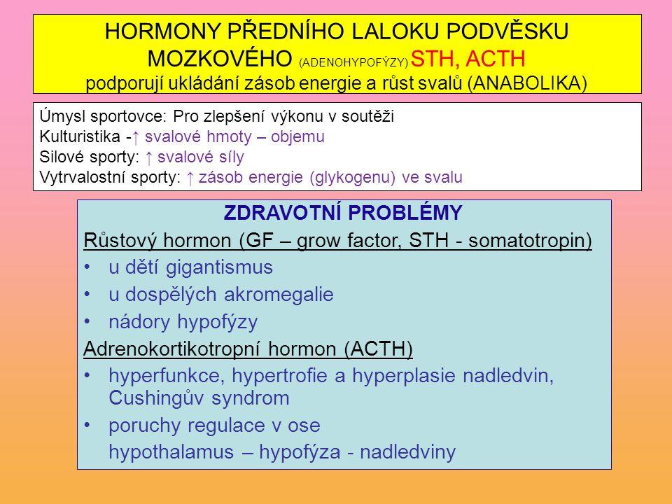 HORMONY PŘEDNÍHO LALOKU PODVĚSKU MOZKOVÉHO (ADENOHYPOFÝZY) STH, ACTH