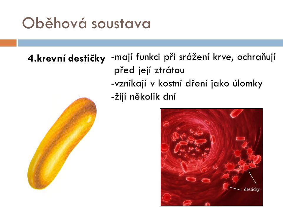 Oběhová soustava 4.krevní destičky