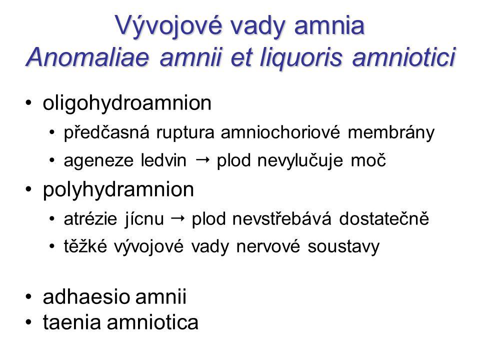 Vývojové vady amnia Anomaliae amnii et liquoris amniotici