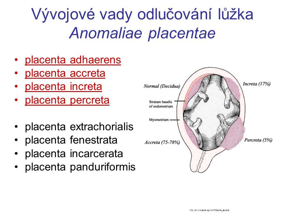 Vývojové vady odlučování lůžka Anomaliae placentae