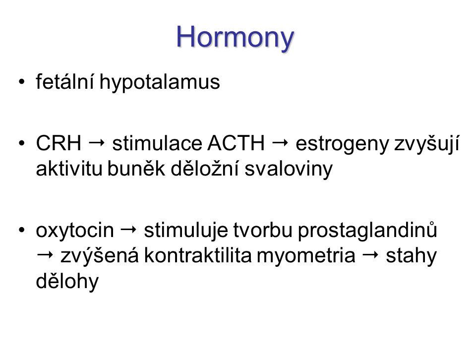 Hormony fetální hypotalamus