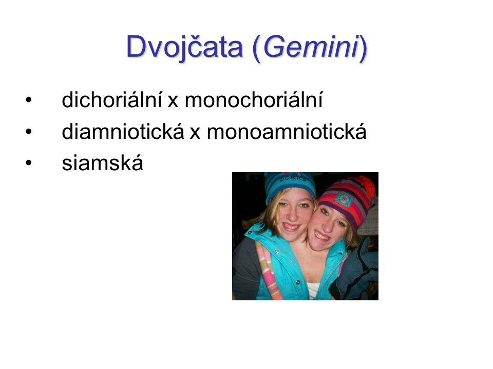 Dvojčata (Gemini) dichoriální x monochoriální