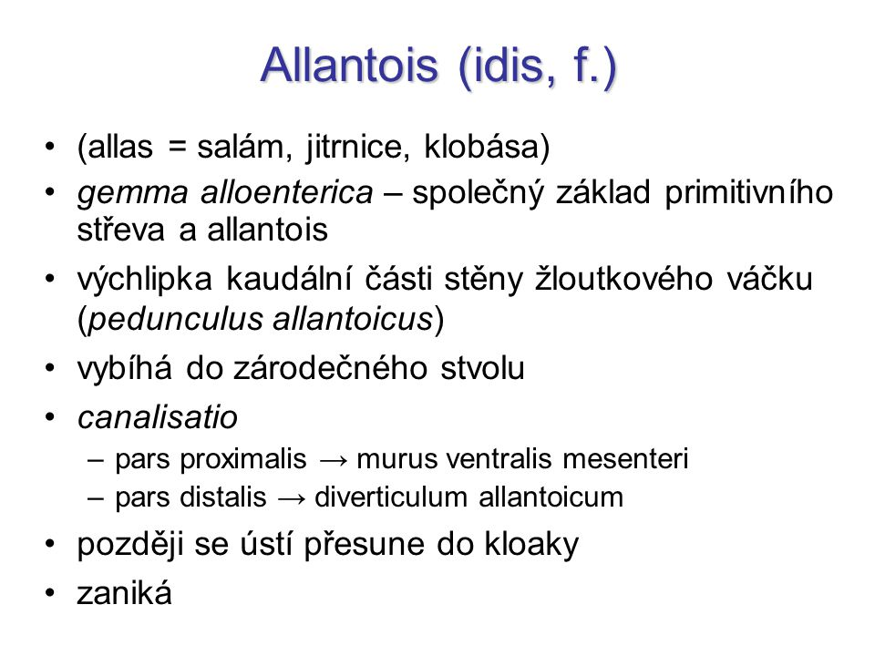 Allantois (idis, f.) (allas = salám, jitrnice, klobása)