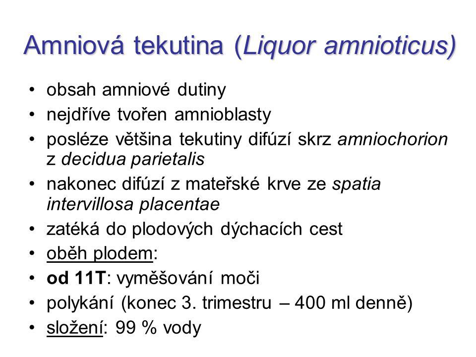 Amniová tekutina (Liquor amnioticus)