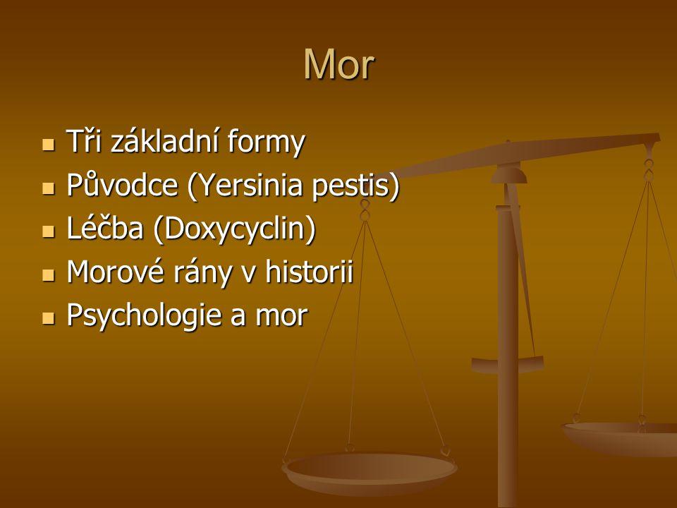 Mor Tři základní formy Původce (Yersinia pestis) Léčba (Doxycyclin)