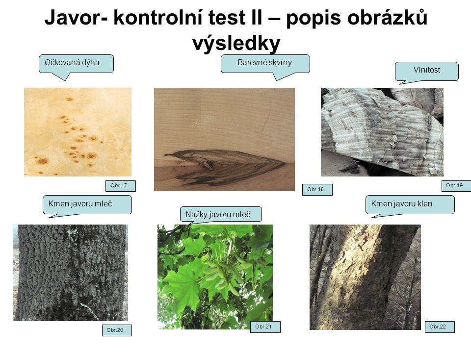 Javor- kontrolní test II – popis obrázků výsledky