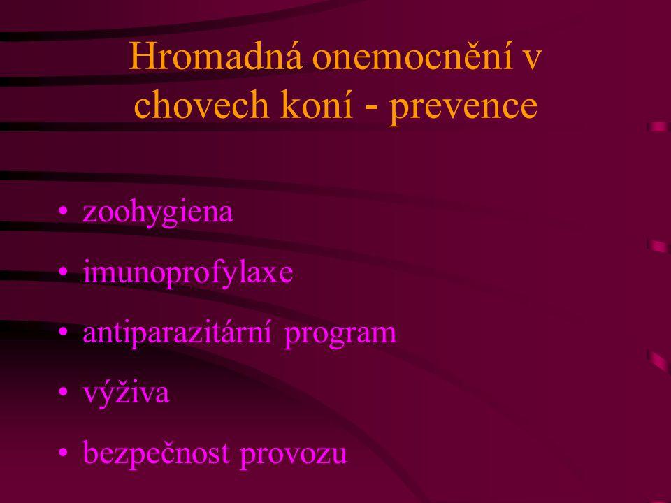 Hromadná onemocnění v chovech koní - prevence