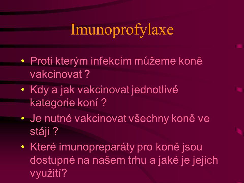 Imunoprofylaxe Proti kterým infekcím můžeme koně vakcinovat