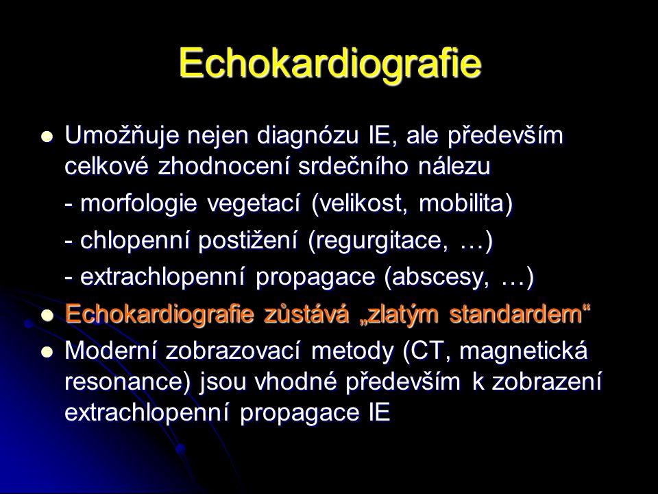 Echokardiografie Umožňuje nejen diagnózu IE, ale především celkové zhodnocení srdečního nálezu. - morfologie vegetací (velikost, mobilita)