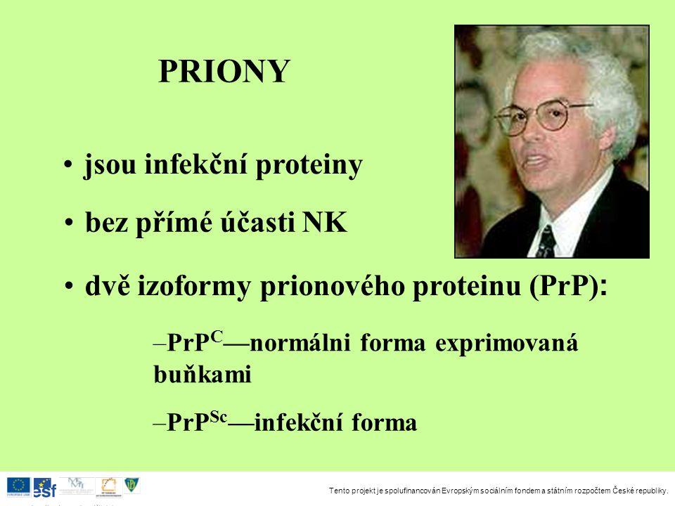 PRIONY jsou infekční proteiny bez přímé účasti NK