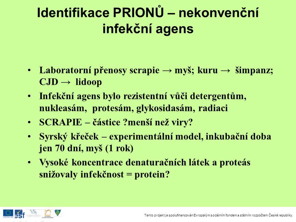 Identifikace PRIONŮ – nekonvenční infekční agens