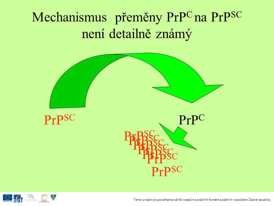Mechanismus přeměny PrPC na PrPSC