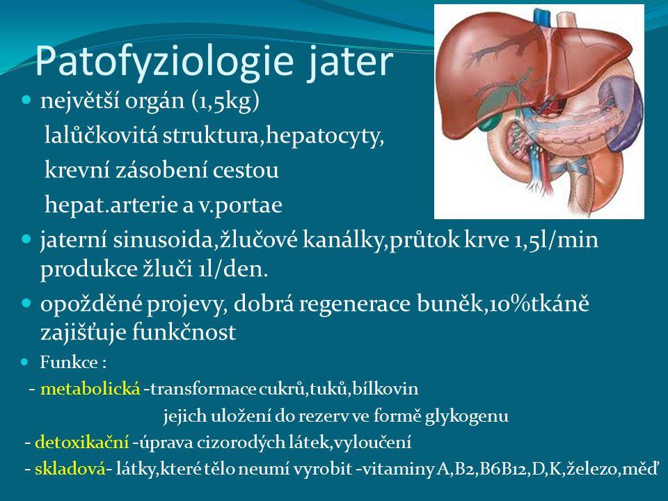 Patofyziologie jater největší orgán (1,5kg)
