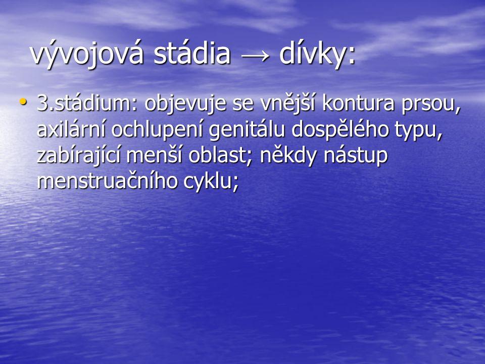 vývojová stádia → dívky: