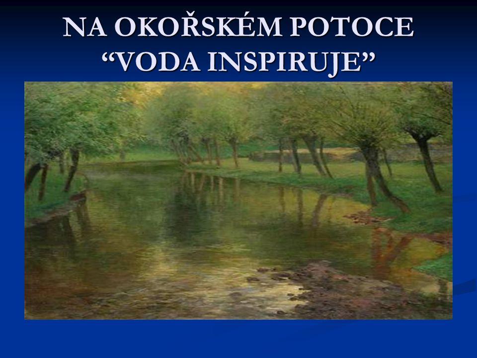 NA OKOŘSKÉM POTOCE VODA INSPIRUJE