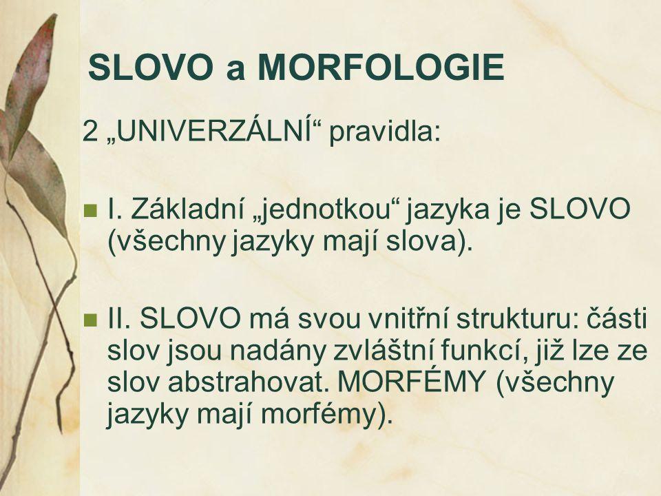 """SLOVO a MORFOLOGIE 2 """"UNIVERZÁLNÍ pravidla:"""