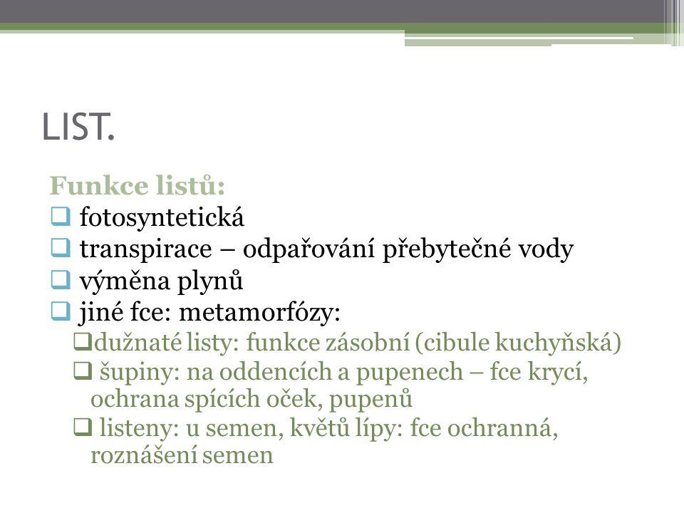 LIST. Funkce listů: fotosyntetická