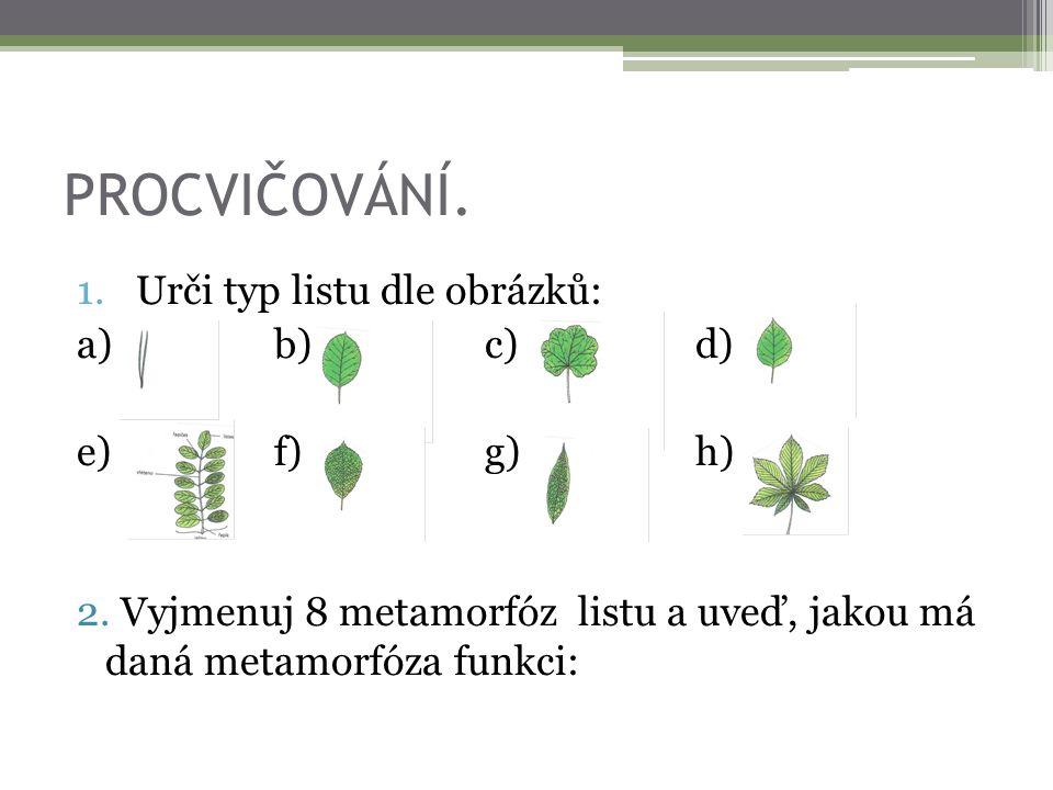 PROCVIČOVÁNÍ. Urči typ listu dle obrázků: a) b) c) d) e) f) g) h)