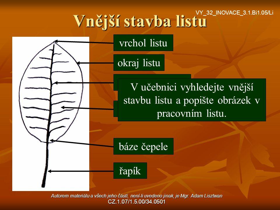 Vnější stavba listu vrchol listu okraj listu listová žilnatina