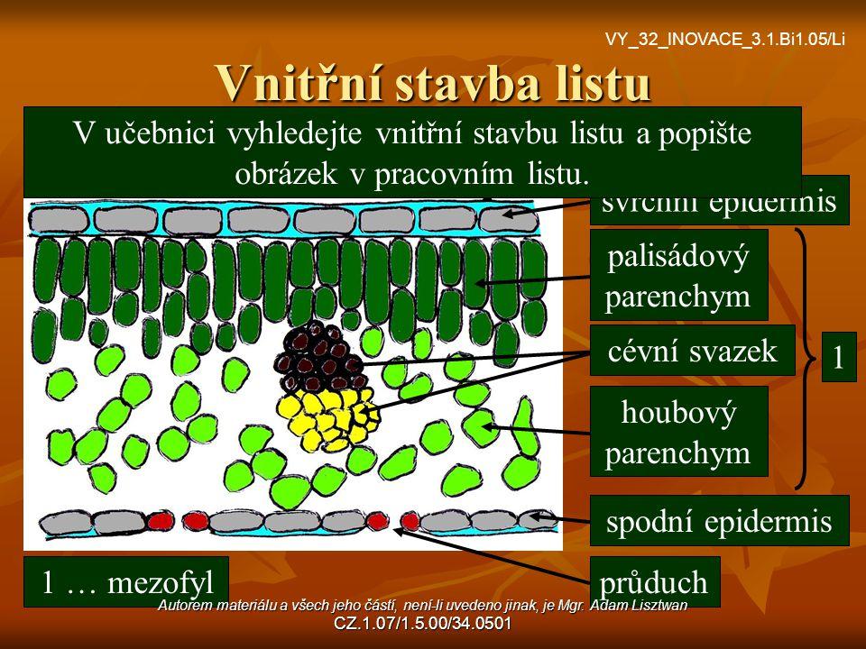 Vnitřní stavba listu VY_32_INOVACE_3.1.Bi1.05/Li. V učebnici vyhledejte vnitřní stavbu listu a popište obrázek v pracovním listu.