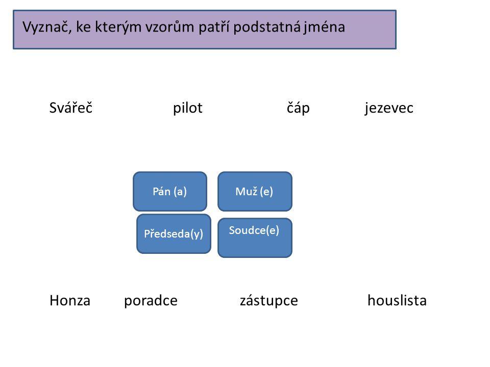 Vyznač, ke kterým vzorům patří podstatná jména