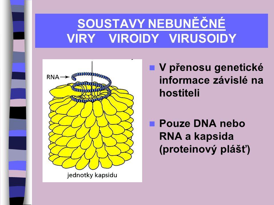 SOUSTAVY NEBUNĚČNÉ VIRY VIROIDY VIRUSOIDY