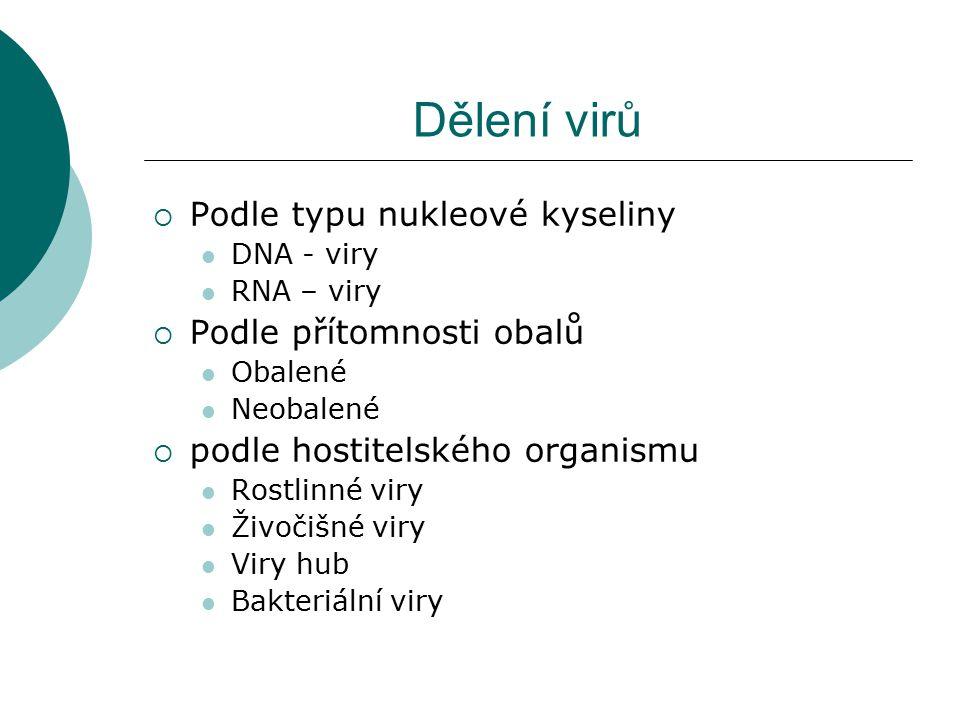 Dělení virů Podle typu nukleové kyseliny Podle přítomnosti obalů