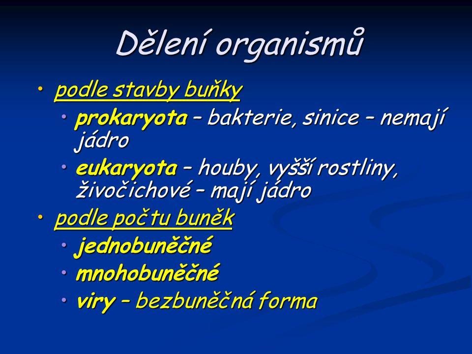 Dělení organismů podle stavby buňky