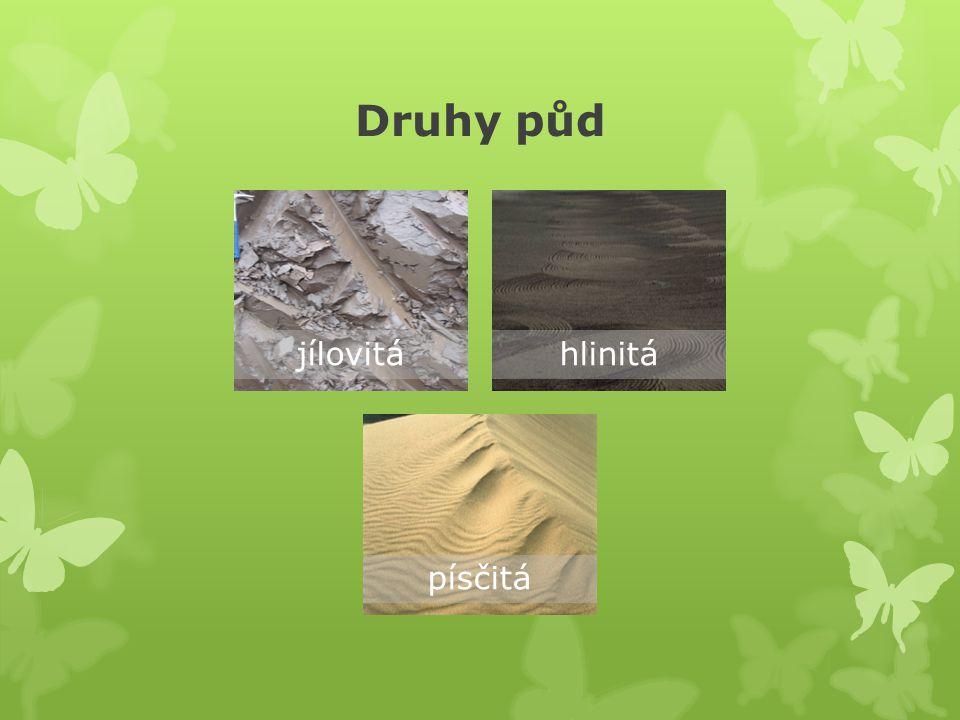 Druhy půd jílovitá hlinitá písčitá