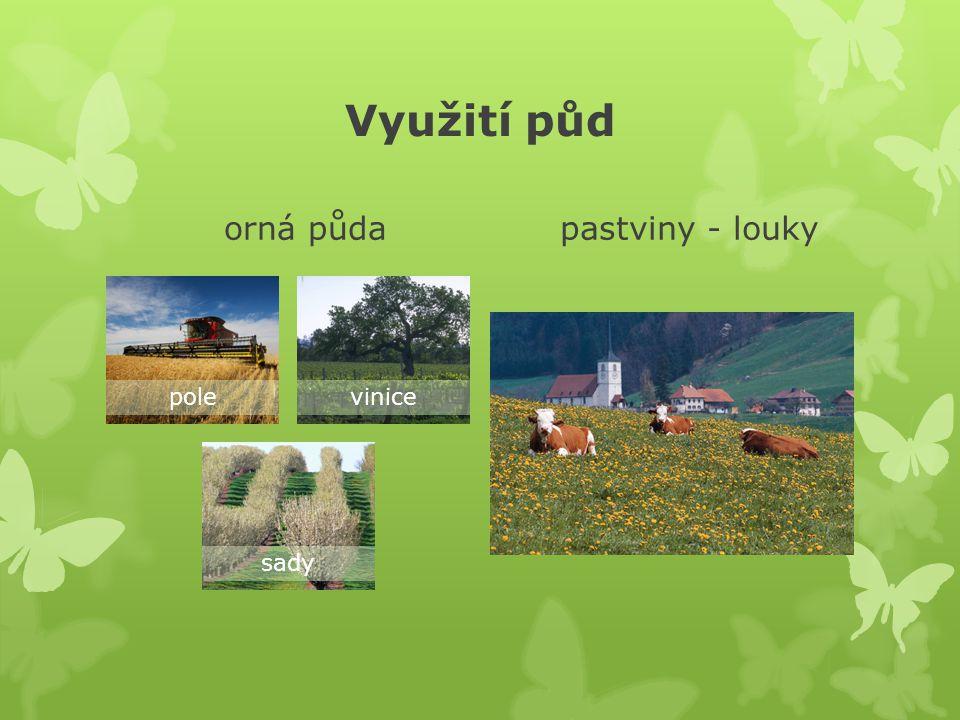 Využití půd orná půda pastviny - louky pole vinice sady