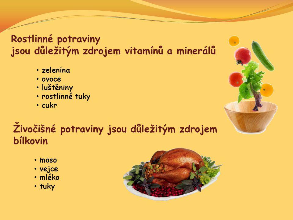 jsou důležitým zdrojem vitamínů a minerálů