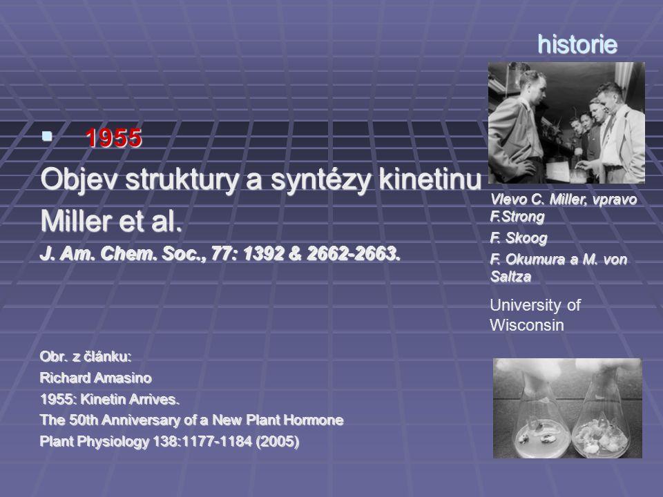 Objev struktury a syntézy kinetinu Miller et al.