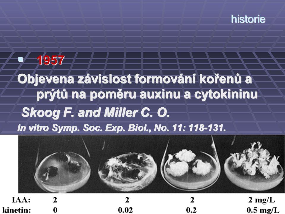 historie 1957. Objevena závislost formování kořenů a prýtů na poměru auxinu a cytokininu. Skoog F. and Miller C. O.