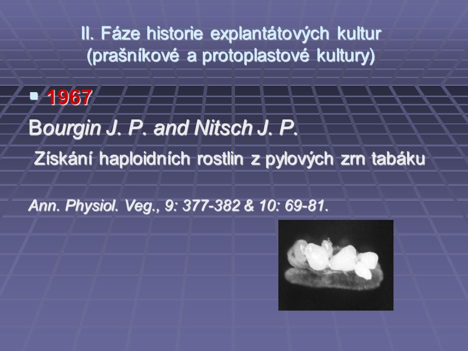 Bourgin J. P. and Nitsch J. P.