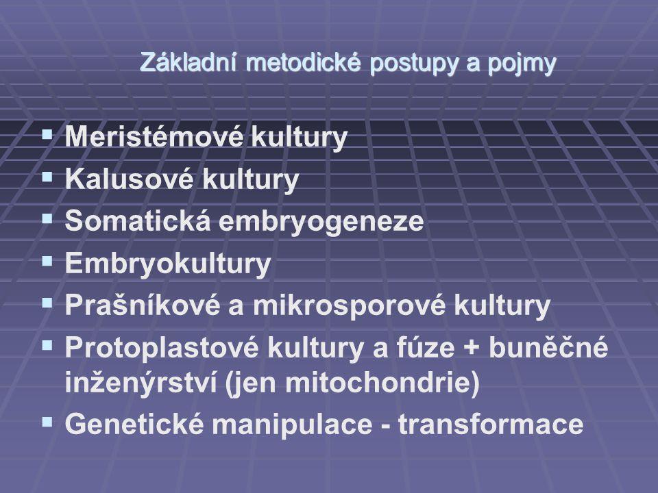 Základní metodické postupy a pojmy