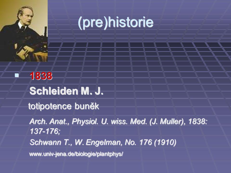 (pre)historie 1838 Schleiden M. J. totipotence buněk