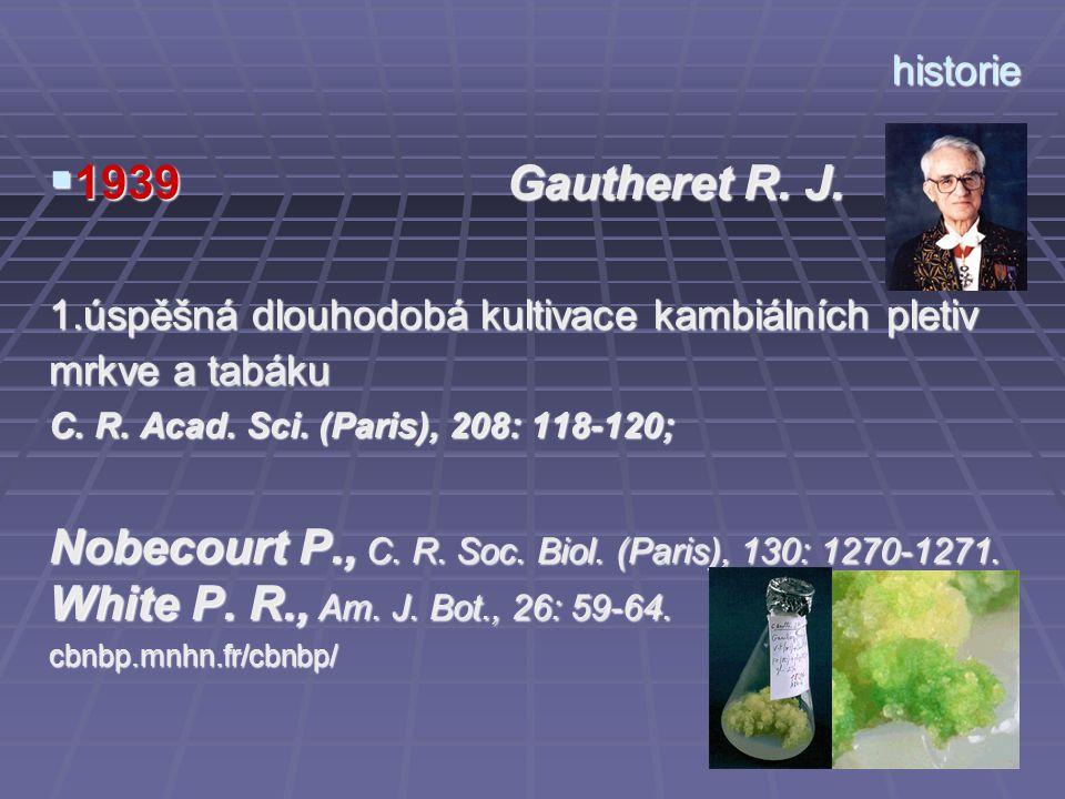 historie 1939 Gautheret R. J. 1.úspěšná dlouhodobá kultivace kambiálních pletiv mrkve a tabáku.