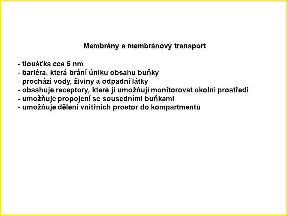 Membrány a membránový transport